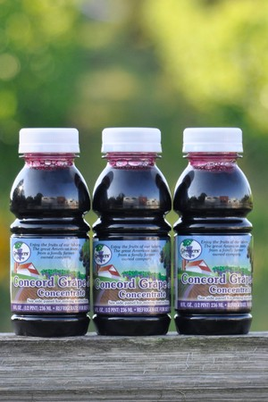 Concord Grape Juice Concentrate - Half-pint